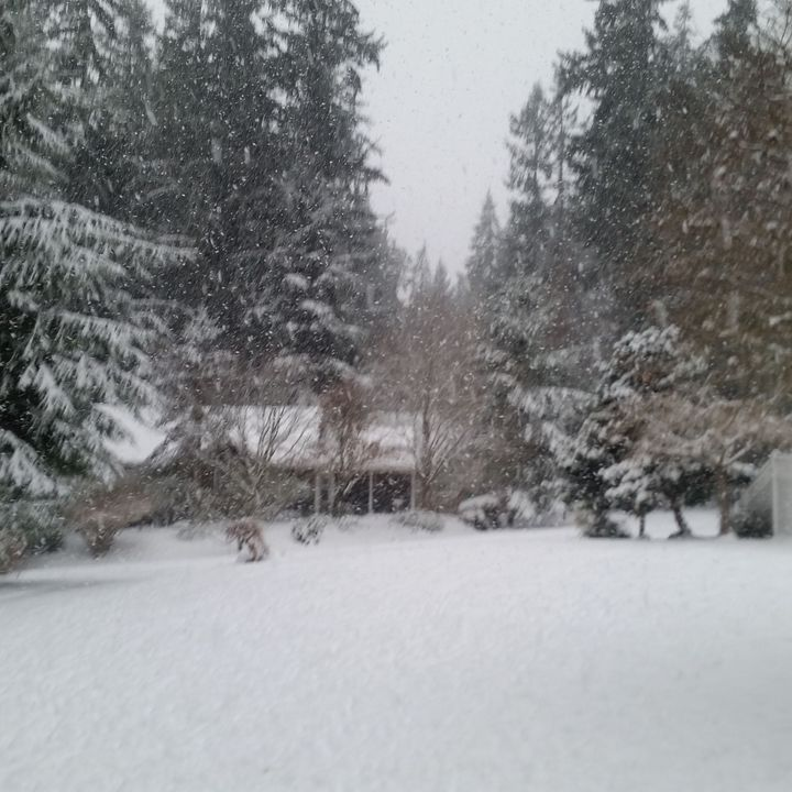 60 Seconds for Wednesdays on Whidbey: Snow Days!