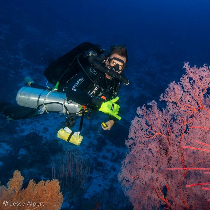 Stoa Scleractinia Ep3 Part 6 The advantages of using closed circuit rebreathers (CCR) for diving activities