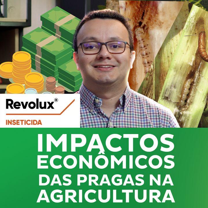 Impactos econômicos das pragas na agricultura