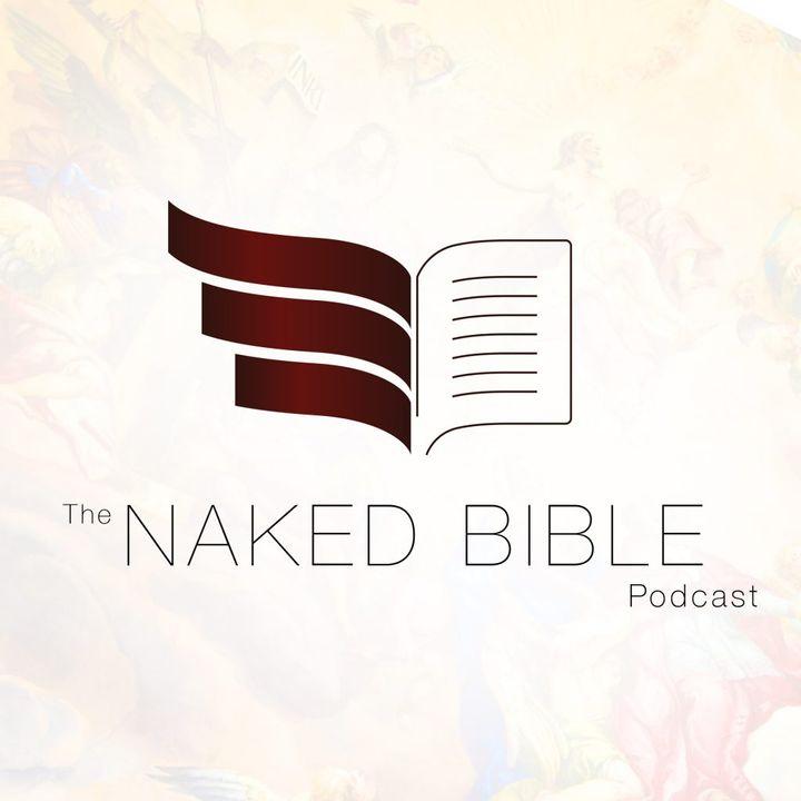 Naked Bible - Michael Heiser - Revelation 19 Part 1