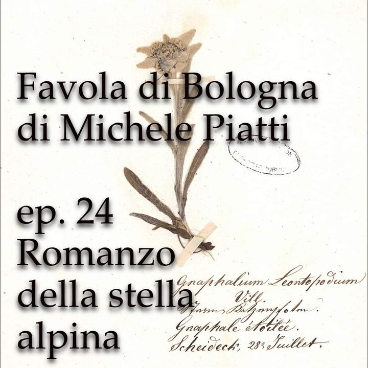 Romanzo della Stella Alpina - FAvola di Bologna - s01e24