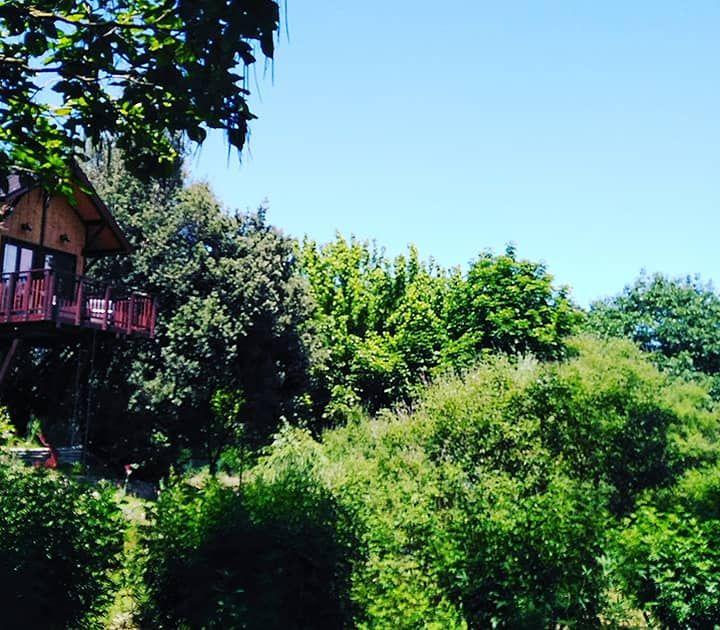 Dormire sugli alberi Il Piemonte vi offre 5 opzioni diverse per provare questa favolosa esperienza (online-audio-converter.com)