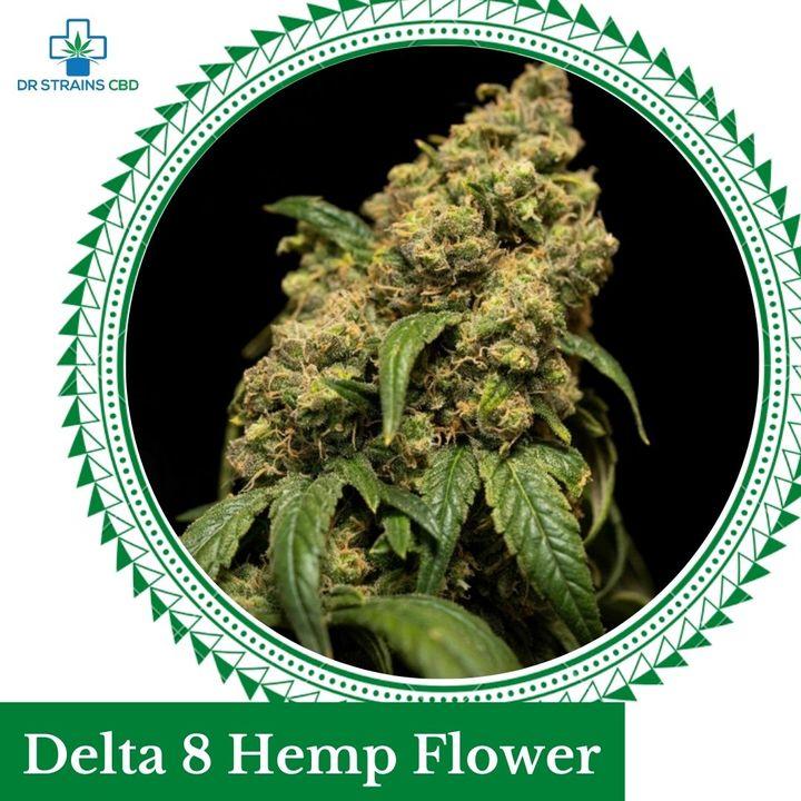 Buy Hemp Flower For Sale From Cbd Store In Orlando