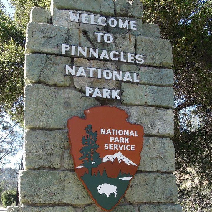 Biodiversity in Pinnacles National Park - Park Ranger Elizabeth Hudick