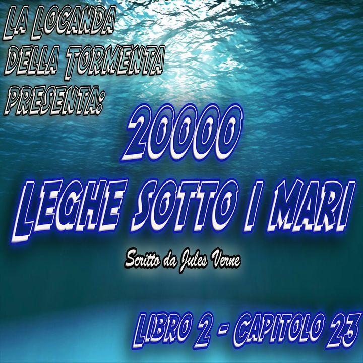 20000 Leghe sotto i mari - Parte 2 - Capitolo 23