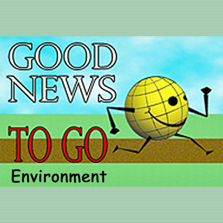 Good News To Go: Environment