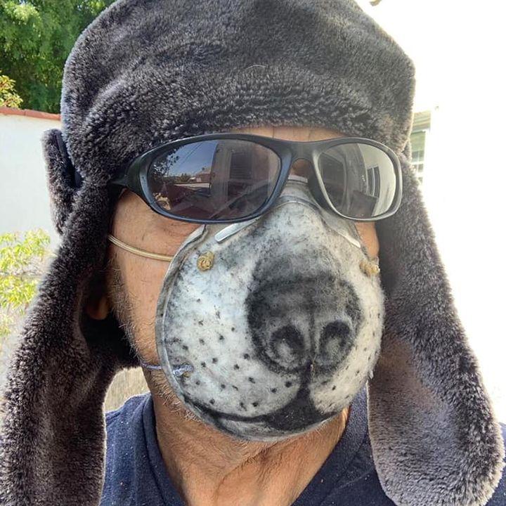 Live1 DoggyBoom Szczeniak w czasach zarazy