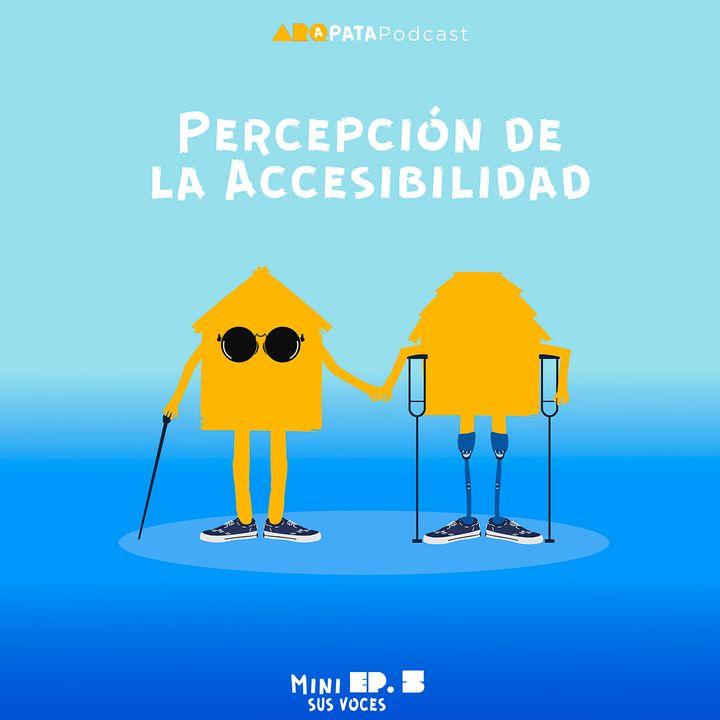 T1MiniE5: Sus voces - Percepción de la accesibilidad
