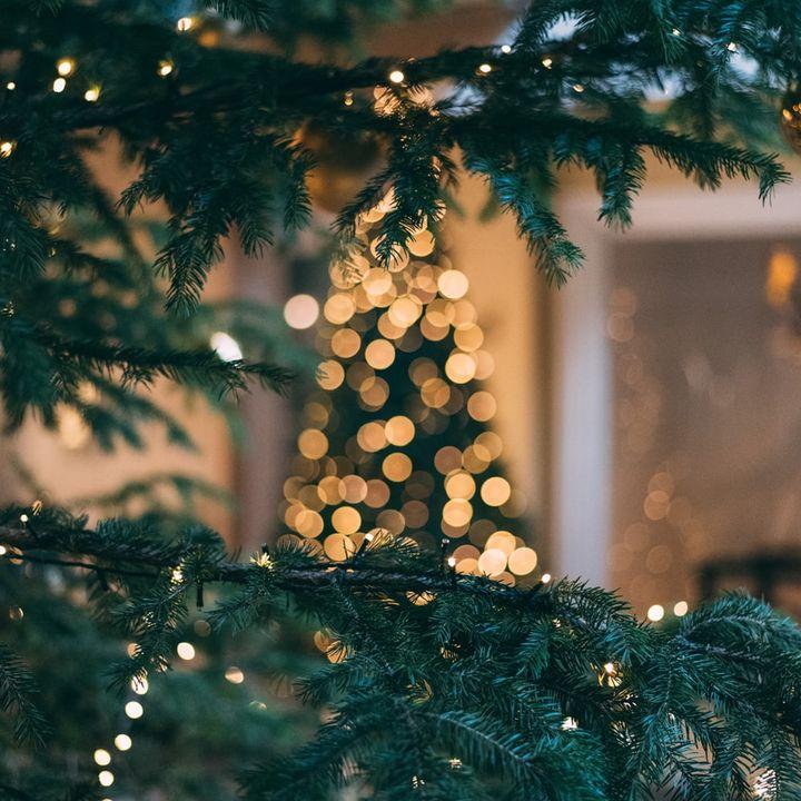 Puntata special di Natale