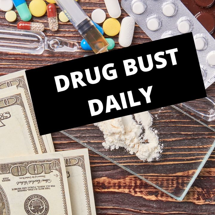 Daily Drug Busts