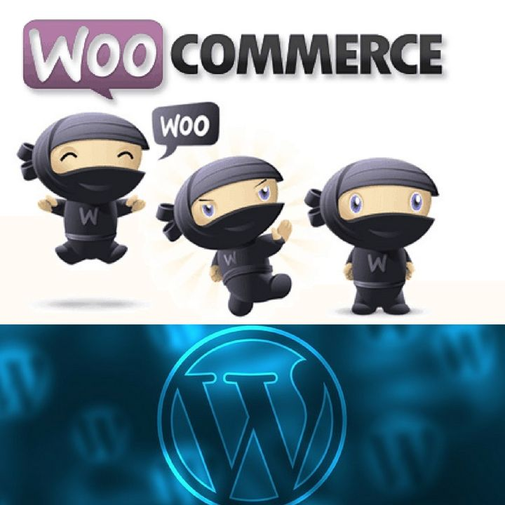 Getting started with WordPress Woocommerce