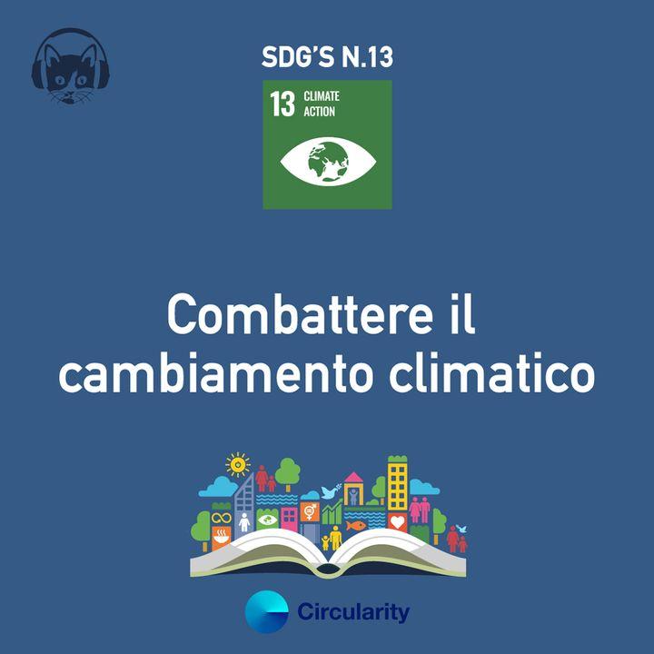 13. Combattere il cambiamento climatico