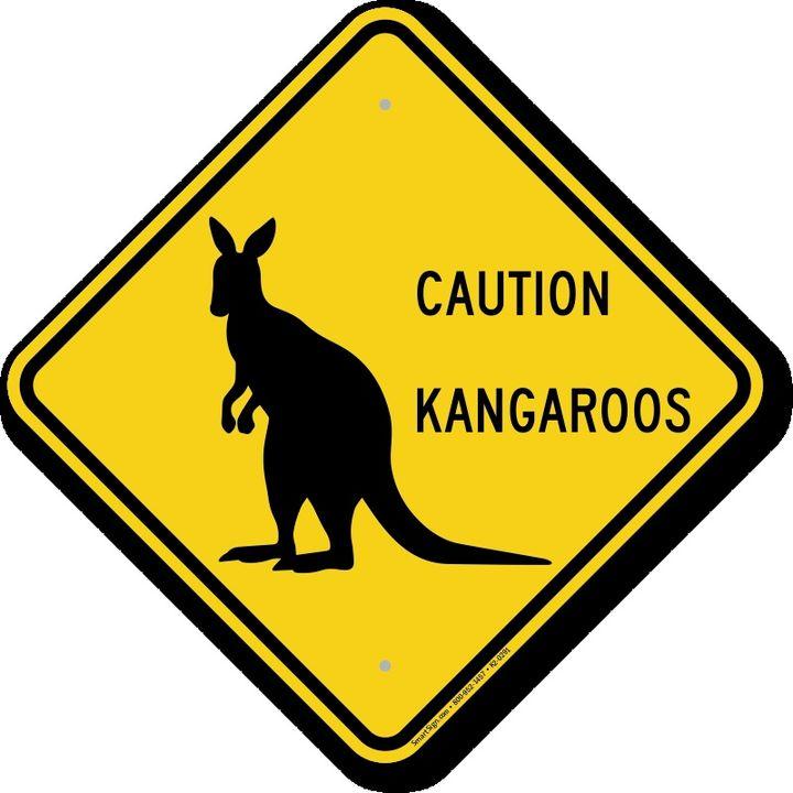 Courtney Barnett & more Aussie Bands (attenti ai canguri)