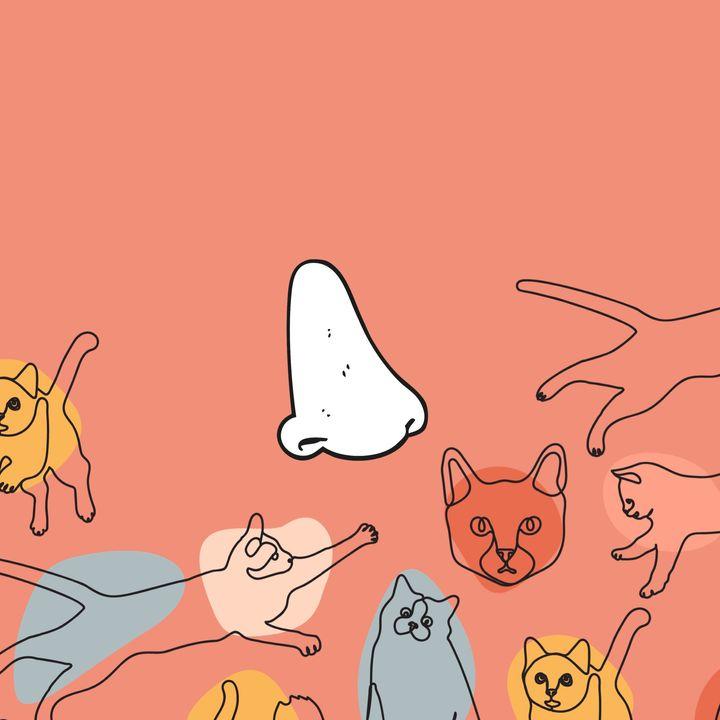 4x04 - Poemas para entender a los gatos