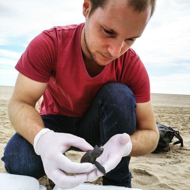 Medicina veterinaria de animales marinos | Planeta Agua #17