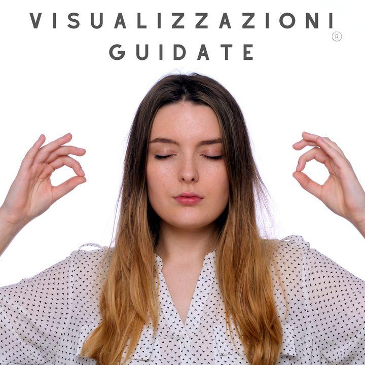 VISUALUZZAZIONI GUIDATE