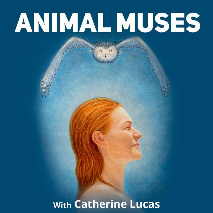 Animal Muses
