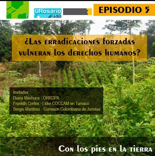 ¿Las erradicaciones forzosas vulneran los derechos humanos?