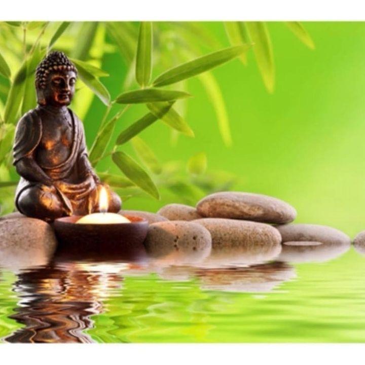 Do autoconhecimento à harmonia do ser