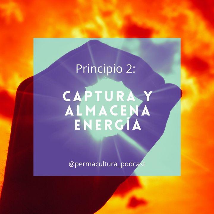 T1E07 - Principio 2  Captura y almacena energía