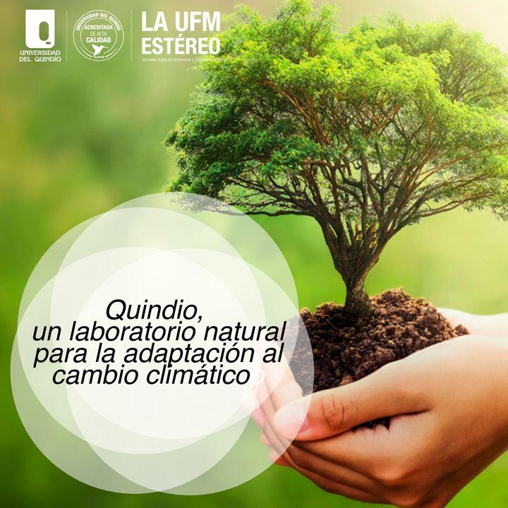 Máquina de Ingenio mayo 28 2021 - Quindío, un laboratorio natural para la adaptación al cambio climático (1)
