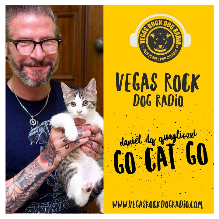 Cats Live In The Meow, Interview With Daniel 'DQ' Quagliozzi of Go Cat Go.