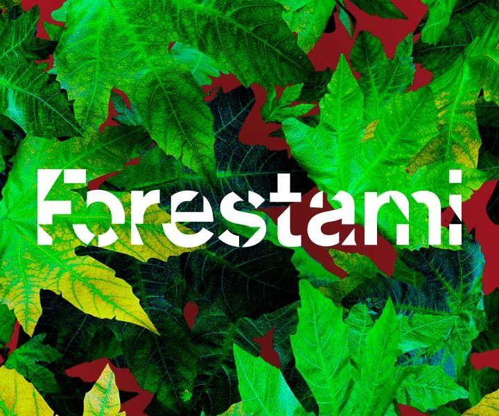 Forestazione urbana e il Progetto ForestaMi. Intervista all'architetto Luca Bergo, referente della Fondazione Ticino Olona.