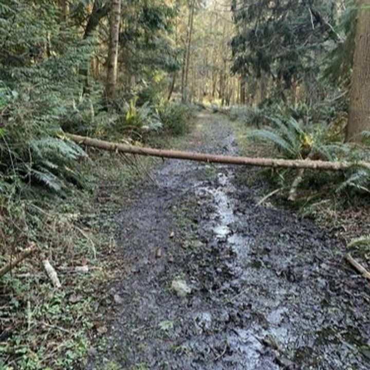 60 Seconds for Wednesdays on Whidbey: Beware Trail Conditions and Control What's in Front of You.