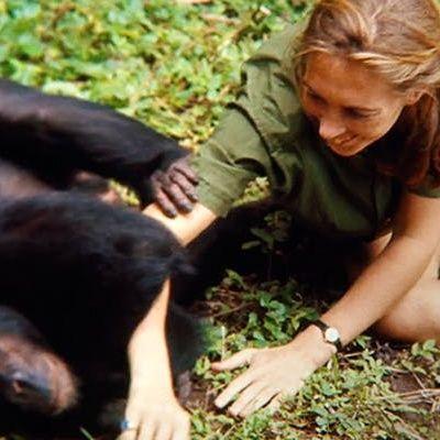 Uno scimpanzé per Jane Goodall e una moto per Effie Hotchkiss