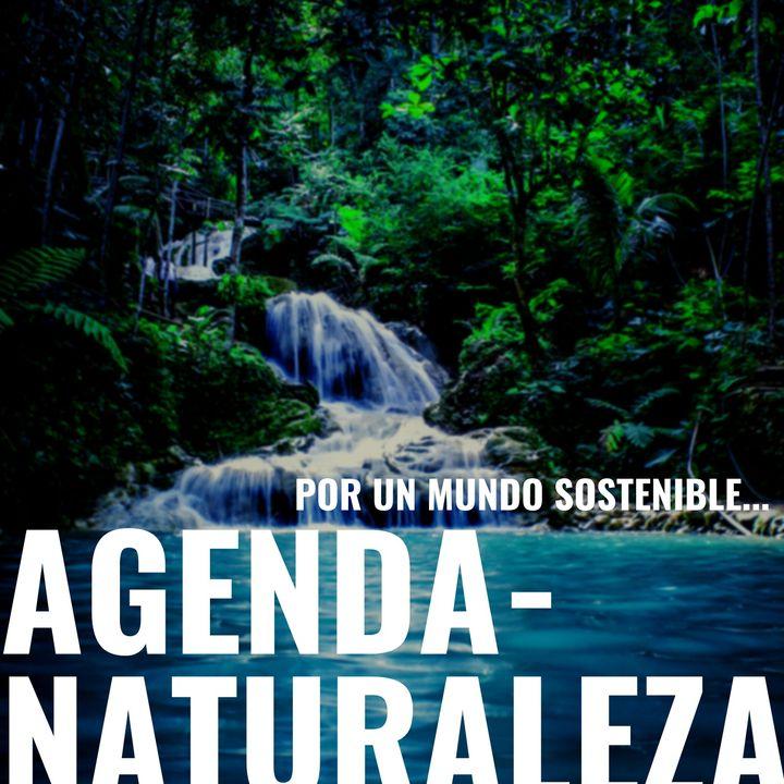 Agenda Naturaleza 109 Pelo salvador.