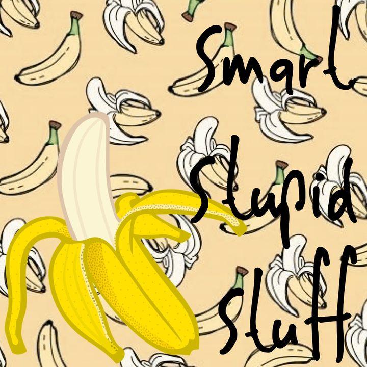 Smart Stupid Stuff
