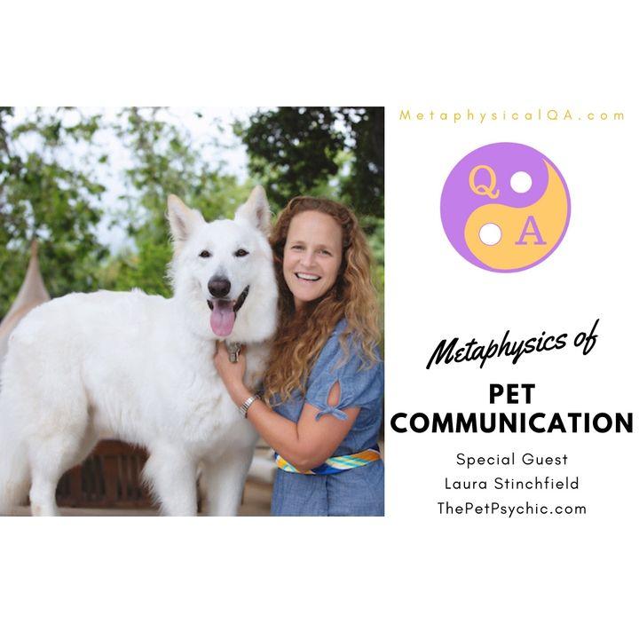 Metaphysics of Pet Communication