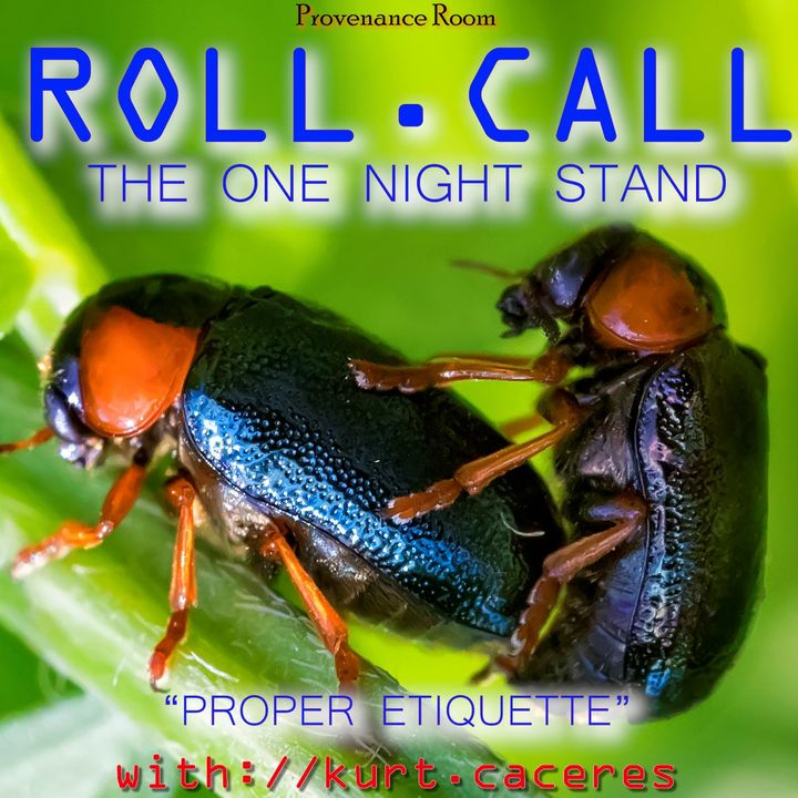 THE ONE NIGHT STAND - Proper Etiquette