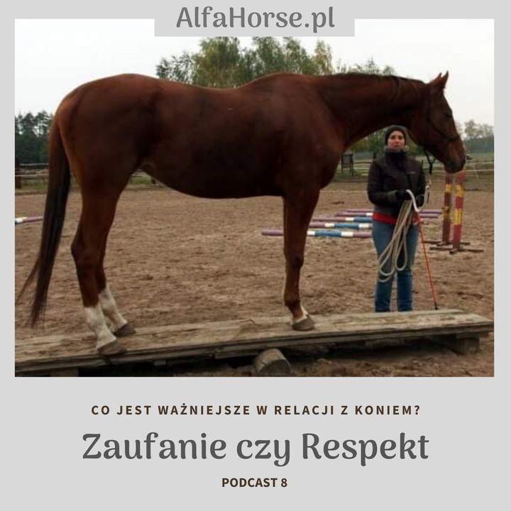 Podcast 8:  Co jest ważniejsze w treningu koni? Zaufanie czy respekt?