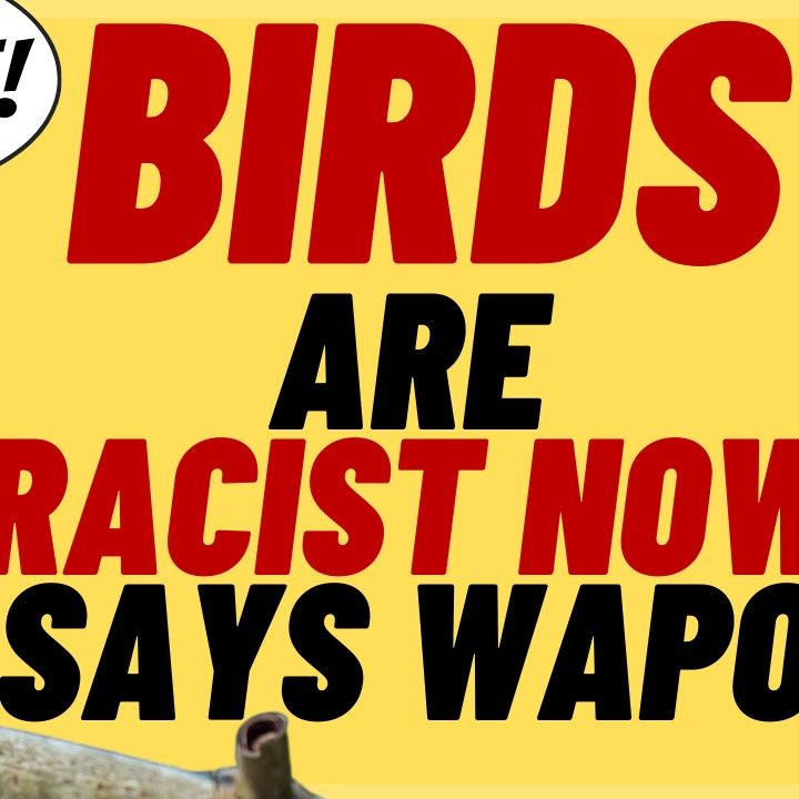 BIRDS ARE RACIST Now, According To The Washington Post