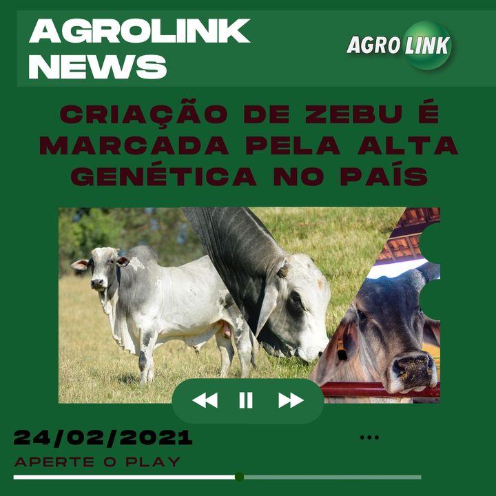 Agrolink News - Destaques do dia 24 de fevereiro