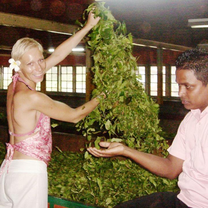 "Odc.11 Sri Lanka ""Czas na herbatkę"""