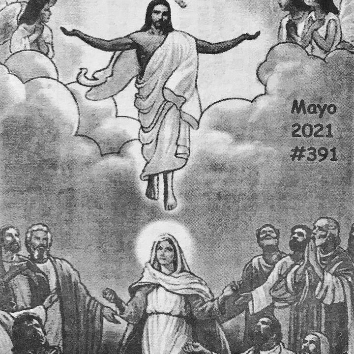 Evangelio Del Día Viernes 7 de Mayo | Calor Materno de María | Hoy en Oración