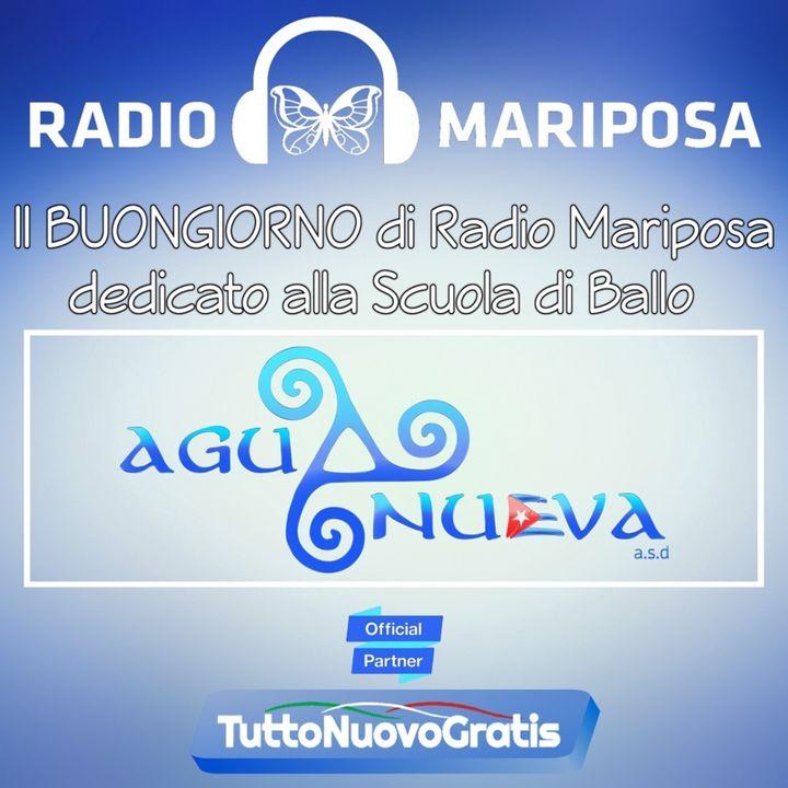 """Buongiorno e Buon Martedì con Charanga Forever: """"Dale Like""""   Timba   Musica Cubana   Episodio 800"""