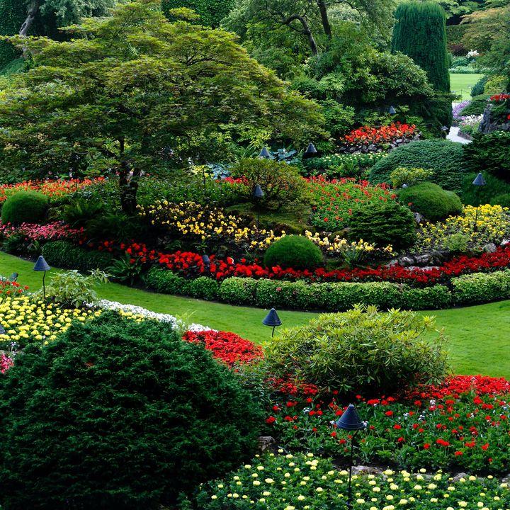 Tara Bernardin   Time To Beautify The Backyard