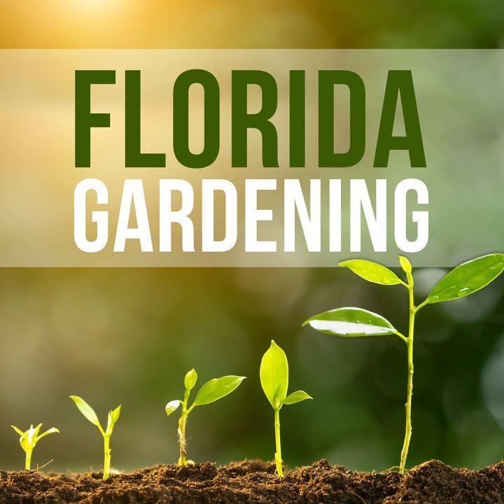 Florida Gardening with John Perry from Green County Fert and Joe Swett of Sunrise Irrigation Pt.1