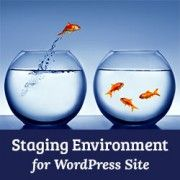 Why You Should Use WordPress Staging