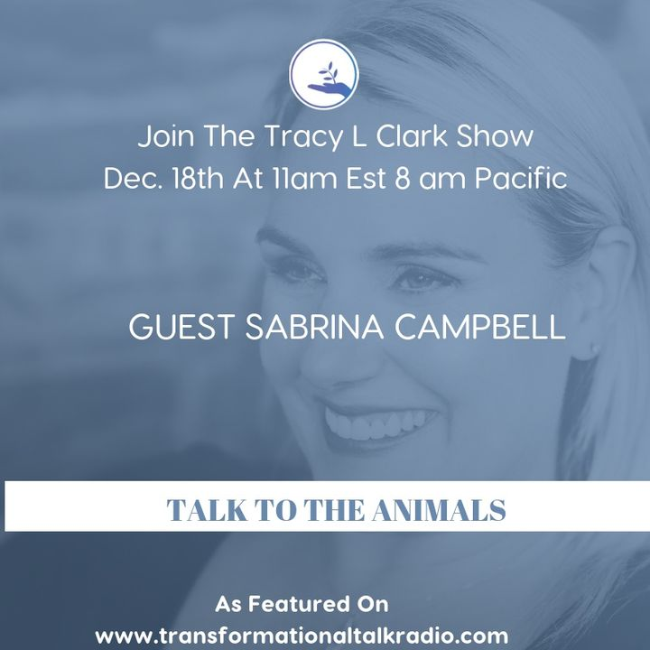 The Tracy L Clark Show: Live Your Extraordinary Life Radio: ARE YOUR READY TO TALK TO YOUR ANIMALS