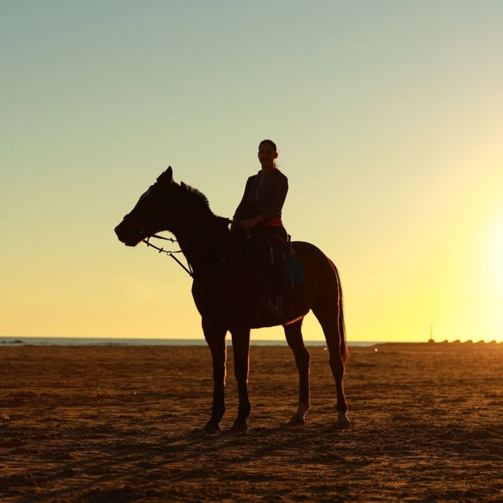 60 Seconds for Story Prompt Friday: What Horse Threw You? Get Back On!