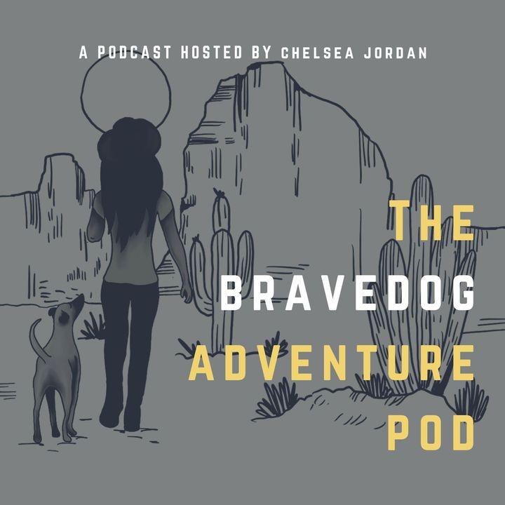 The Bravedog Adventure Pod