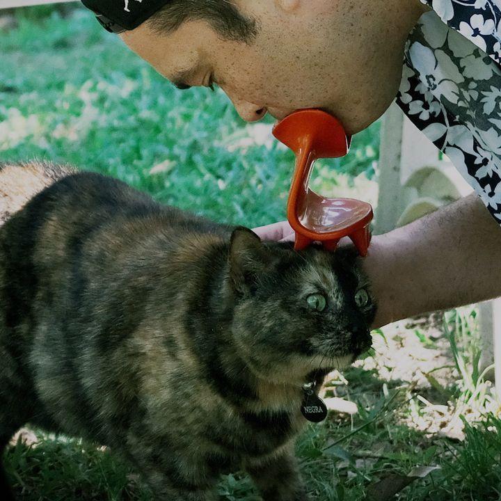 Duryan finally licks a cat