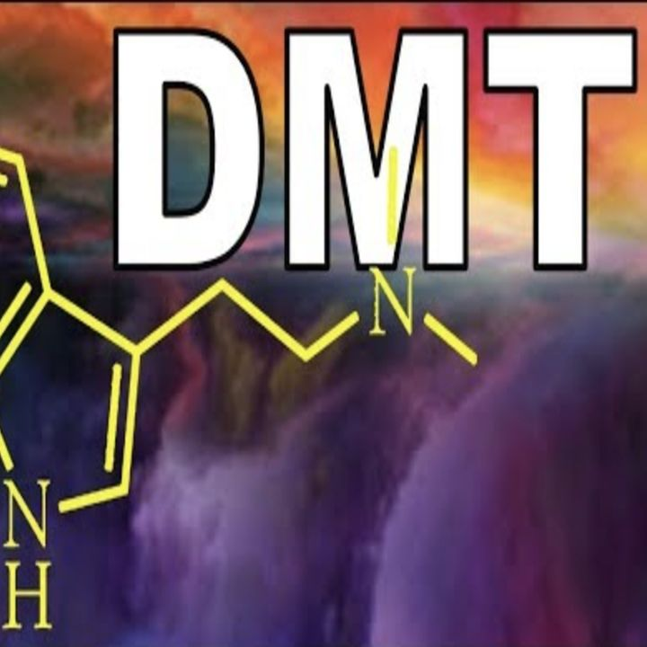 NEUROSCIENTIST on DMT-AYAHUASCA trip in ALTERNATE DIMENSION may be going INSANE