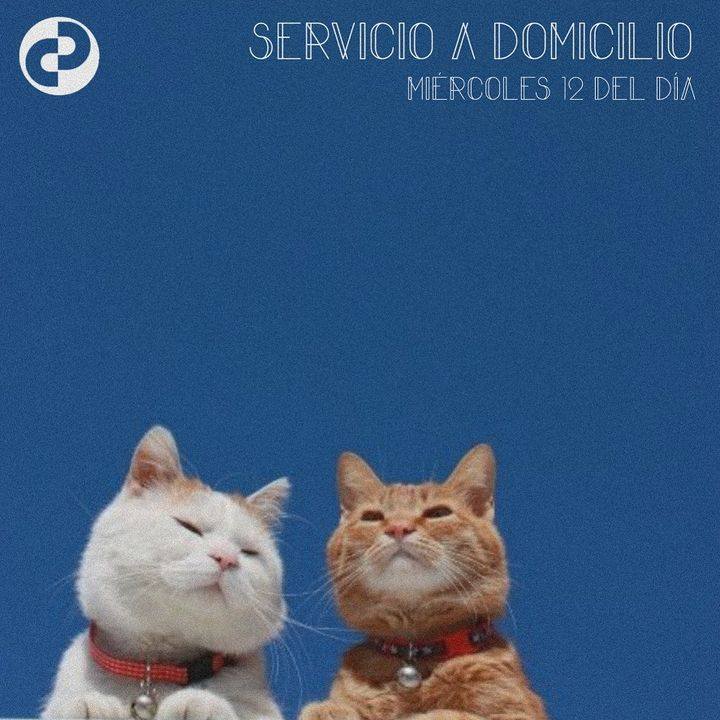 Servicio a domicilio 82