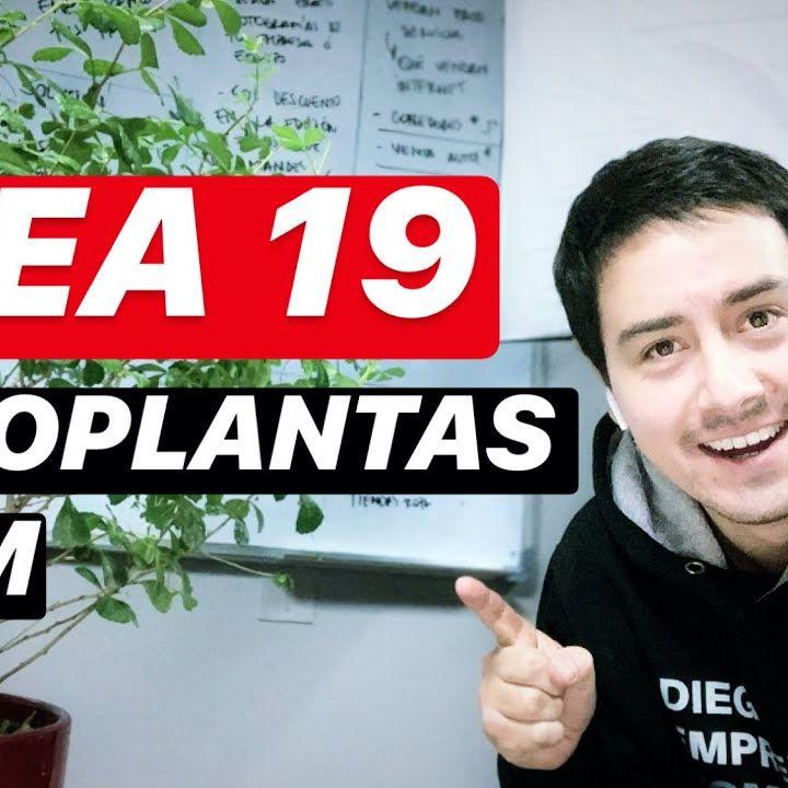 # Idea 19 TodoPlantas.com
