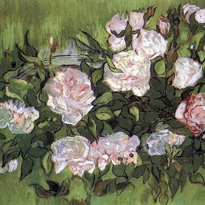 Poesia Le Parole di Crima - 157 Profumo di Rosa